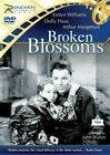 Broken Blossoms 5060172960453 DVD Region 2