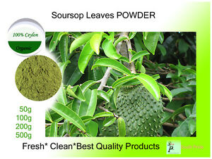 Details about SOURSOP LEAVES POWDER (Guanabana )CEYLON MORE HEALTH BENEFITS  FREE SHIPPING