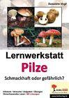 Lernwerkstatt Pilze von Susanne Vogt (2013, Taschenbuch)