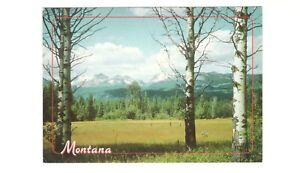 Big-Sky-Country-Montana-4-x-6-Vintage-Unused-Postcard-SL1