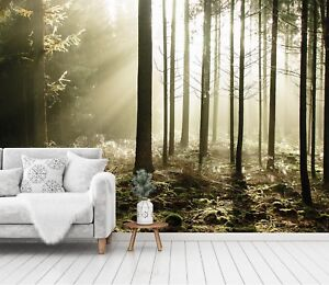 3d sunshine woodland 45 wallpaper murals wall print wallpaper muralimage is loading 3d sunshine woodland 45 wallpaper murals wall print