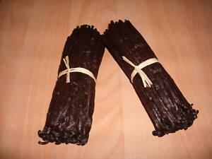 20 GOUSSES VANILLE FRAICHE -BOURBON MADAGASCAR