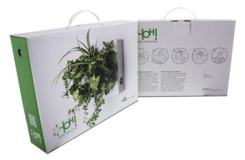 HOH Oasi Hang Home by Ortis Green 1 Kit Indoor Vertical Garden