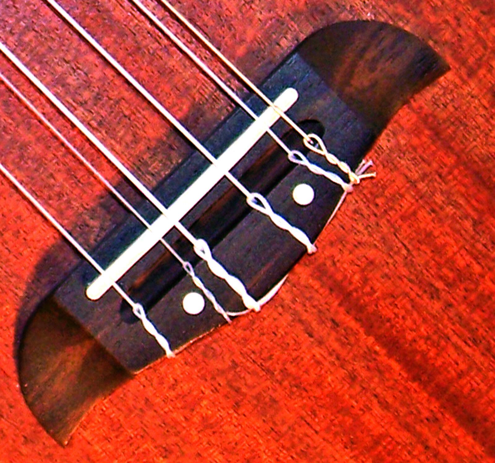 Oscar Schmidt OU26T 6 string Tenor Ukulele, Octave pair C & A, individual G & E