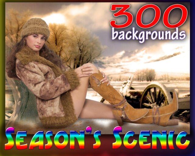 US6 Season Scenic Digital Photo Backgrounds Backdrops Winter Summer Fall Spring