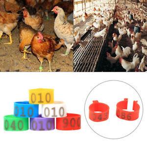 100pc Clip auf Beinband Ringe Hühner Enten Hühner Geflügel Taube