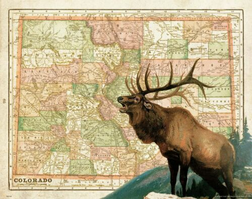Elk Hunting Colorado State Map Art Print Vintage Cabin Decor Deer Antlers MAP68
