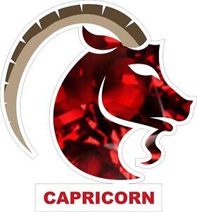 Capricorn-Decal-Sticker