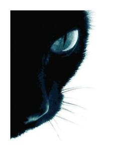 Eye-of-the-Tiger-Giant-Black-Cat-DIGITAL-Counted-Cross-Stitch-Pattern-Chart