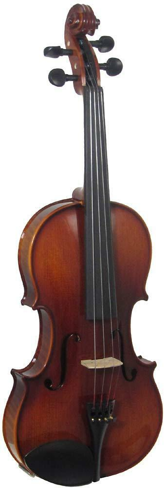 Valentino VM-130 FULL Größe VIOLIN OUTFIT, 4 4 Größe, Flamed maple body, gloss