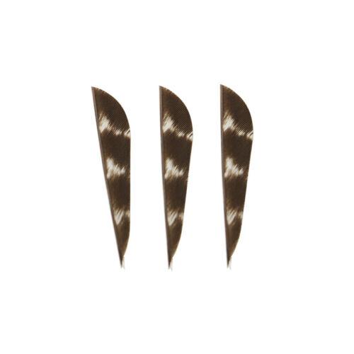 "12pcs Arrow 2/"" Natural Feather Stripe Turkey Fletches Fletching Archery Bow DIY"