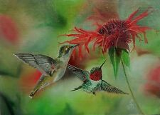 RUBY THROATED HUMMINGBIRDS Hand Painted Wildlife Bird Flower Garden by JV 5x7in.