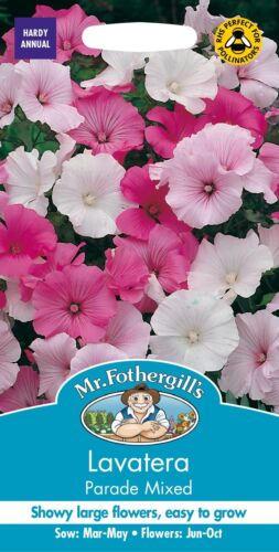 Mr Fothergills Flower 75 Seeds Pictorial Packet Lavatera Parade Mixed