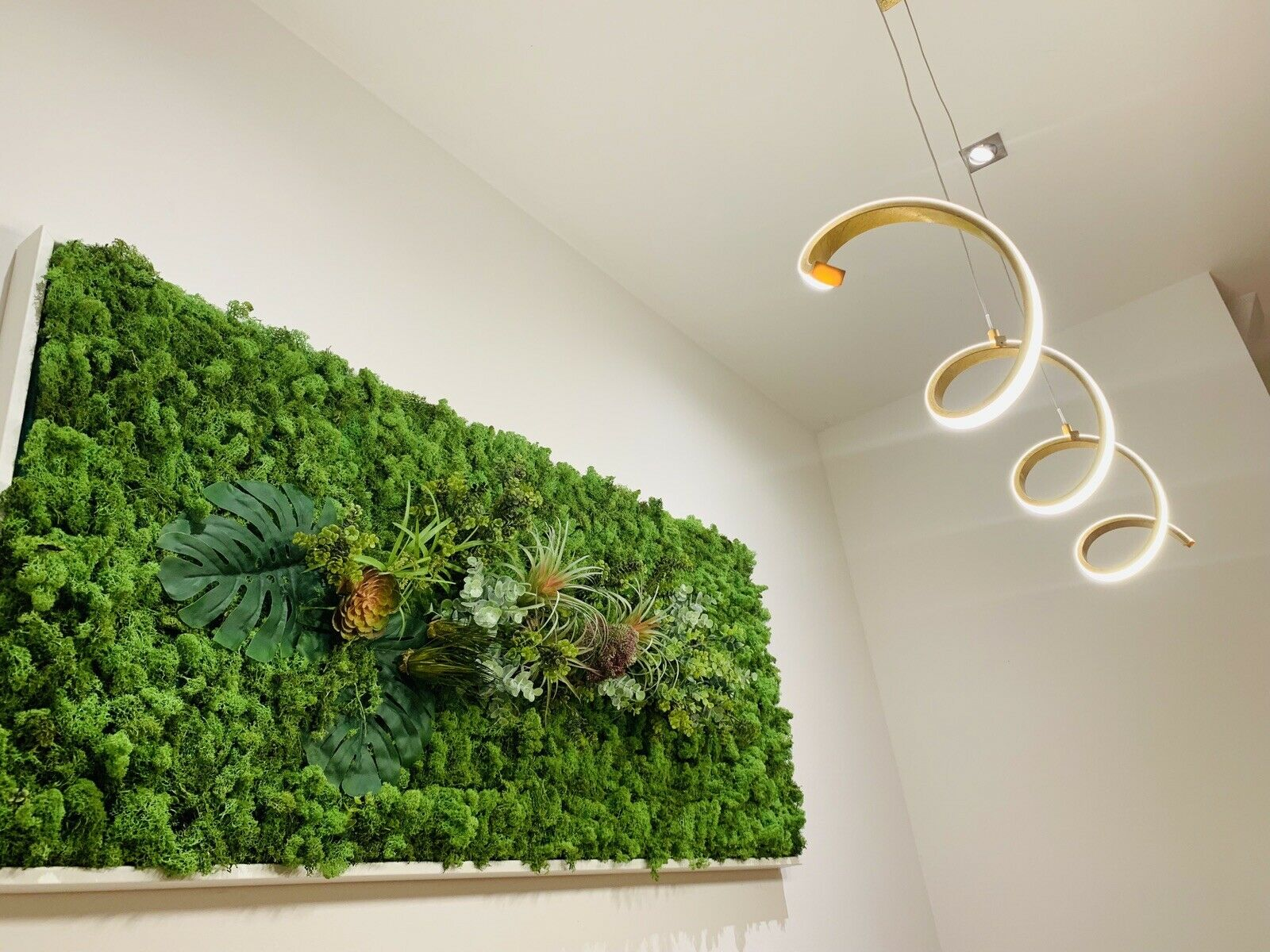 Mooswand Moosbild Moos Bild Wandbild Pflanzenbild Moosdeko 150 x 65 cm