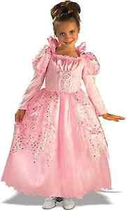 Posh-Pink-Fairy-Tale-Sleeping-Beauty-Princess-Aurora-Gown-Dress-Costume-Rubies
