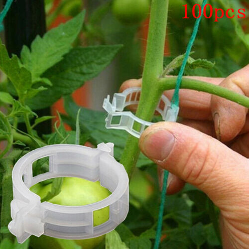 100pcs veggie garden plant support clips for trellis twine greenhouse  VQ