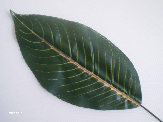 """12x ZEBRA LEAF Artificial Silk Foliage Plant 24"""" /Z01"""