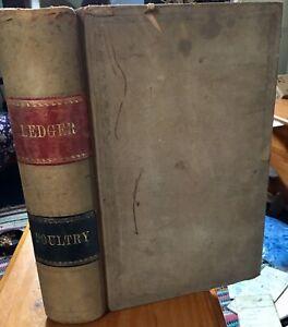 Vintage-POULTRY-Breeding-LEDGER-Clair-Erskine-novelist-Forces-War-Sweetheart-Old