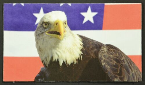A small MAGNET with an image of an American Bald Eagle in front of the U.S Flag