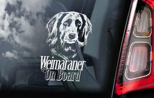 Braco-Weimar-a-Bordo-Coche-Ventana-Pegatina-Vorstehhund-Perro-Largo-Pelo-V02