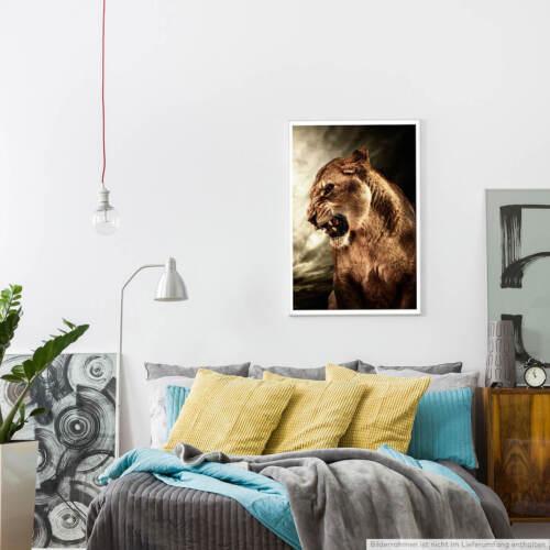 60x90cm Tierfotografie Poster Brüllende Löwin vor grauem Himmel