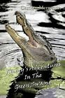 Jimmy's Adventures In The Green Swamp by Me-Mon (Paperback, 2011)