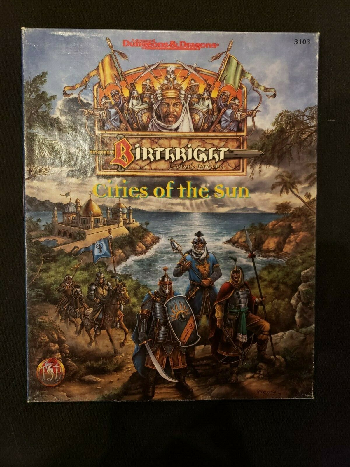 Dungeons & Dragons Birthright Expansion Cities of the Sun Box TSR 3103 1995