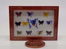 1:12 Scale Butterfly Display Box Dolls House Miniature