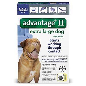 Advantage  Month Large Dogs