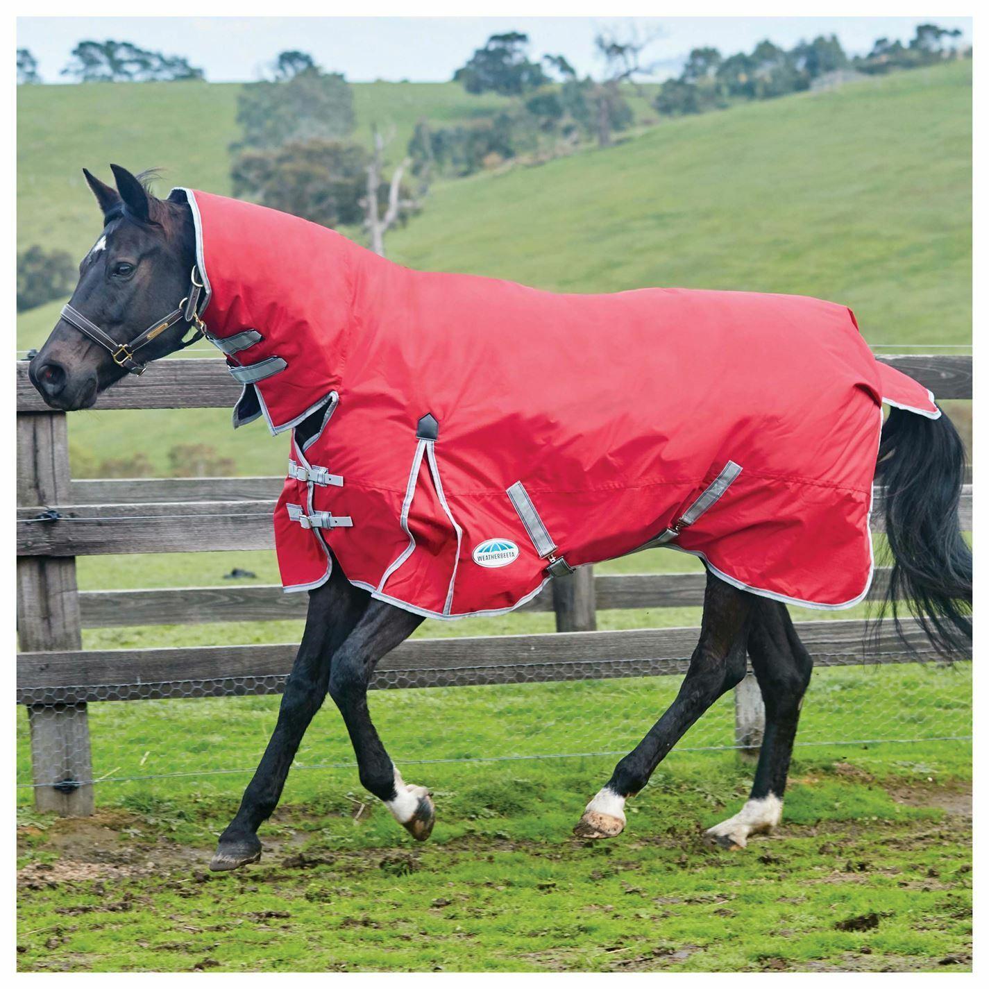 Weatherbeeta Unisex comfitec Clásico Ligero Pony Combo participación desvíos