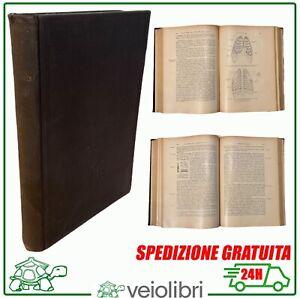 Libro-antico-di-medicina-Diagnosi-clinica-malattie-interne-2-illustrato-Ferrio
