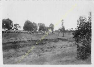 Original Photo Madagascar 1948 n60