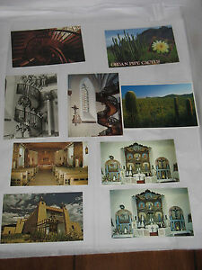 New-Mexico-NM-Loretto-El-Santuario-Chapel-Las-Tampas-Church-Cactus-Postcard-LOT