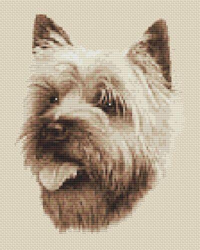 "SEPPIA,8 /""X10/"" 20 x25cm, kit o grafico CAIRN TERRIER DOG CROSS STITCH Design"