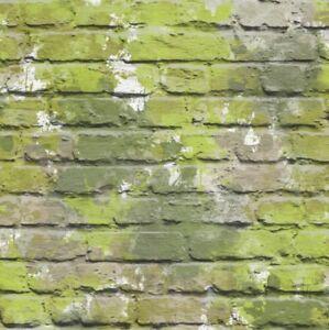 Carta da parati muriva mimetico muro di mattoni for Carta da parati muro di mattoni