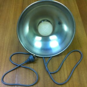 3 piece brooder heat lamp kit 150w lamp 30cm reflector. Black Bedroom Furniture Sets. Home Design Ideas