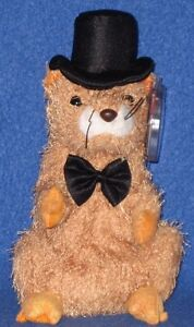 af426ce7295 TY PUNXSUTAWNEY PHIL 2004 GROUNDHOG BEANIE BABY - MINT TAGS - COC PA ...