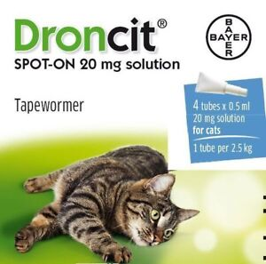 Droncit-Spot-On-Tape-Wormer-for-Cats-4-Pack-Apply-to-the-skin-liquid-wormer
