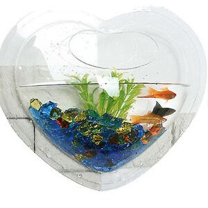 Wall Mount Hanging Betta Fish Bubble Aquarium Bowl Tank Heart Mini Ebay