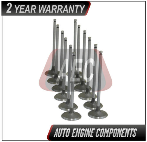 Intake Valve Fits Acura Honda CL MDX Accord 3.0 3.2 3.5 L  J20A4 JNA1 Set of 12