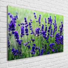 Wandbild aus Plexiglas® Druck auf Acryl 100x70 Blumen /& Pflanzen Lavendelfeld