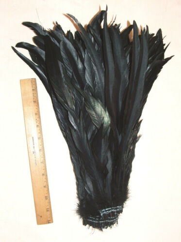 Rooster Tail Coque Feathers 1/4 lb Black Iridescent  16-18 Length