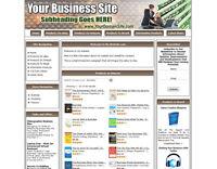 BUSINESS MONEY MAKING STORE Affiliate Website Ebay+Amazon+Google+Dropship