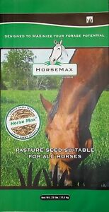 Horse Max Premium Horse Pasture Seed Mix  25 lbs - Inver Grove Heights, Minnesota, United States - Horse Max Premium Horse Pasture Seed Mix  25 lbs - Inver Grove Heights, Minnesota, United States
