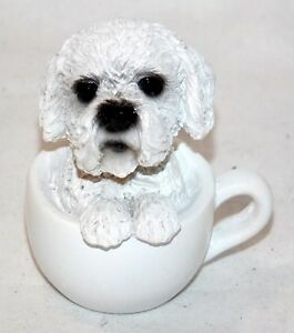 New 225 Adorable Bichon Poodle Puppy Dog Sitting Inside A Teacup