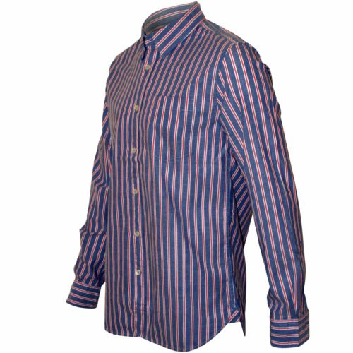 Uomo Regular Camicia French Stripe Blu Connection qSwf8Z
