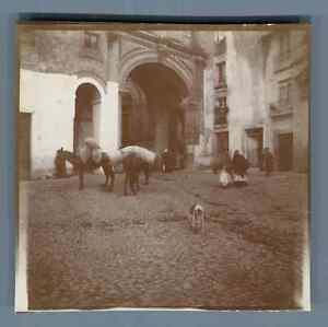 Espana-Toledo-Mujeres-de-Toledo-Vintage-citrate-print-Vintage-Spain-Tir
