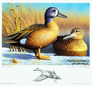 2009-MARYLAND-DUCK-Remarqued-by-Artist-Wally-Makuchal