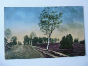 Ansichtskarte-Lueneburger-Heide-Partie-b-Bockel-Nr-652