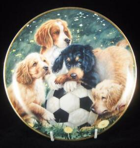 ASPCA-Franklin-Mint-039-Soccer-Scamps-039-Puppy-Dogs-Limited-Edition-Collector-Plate